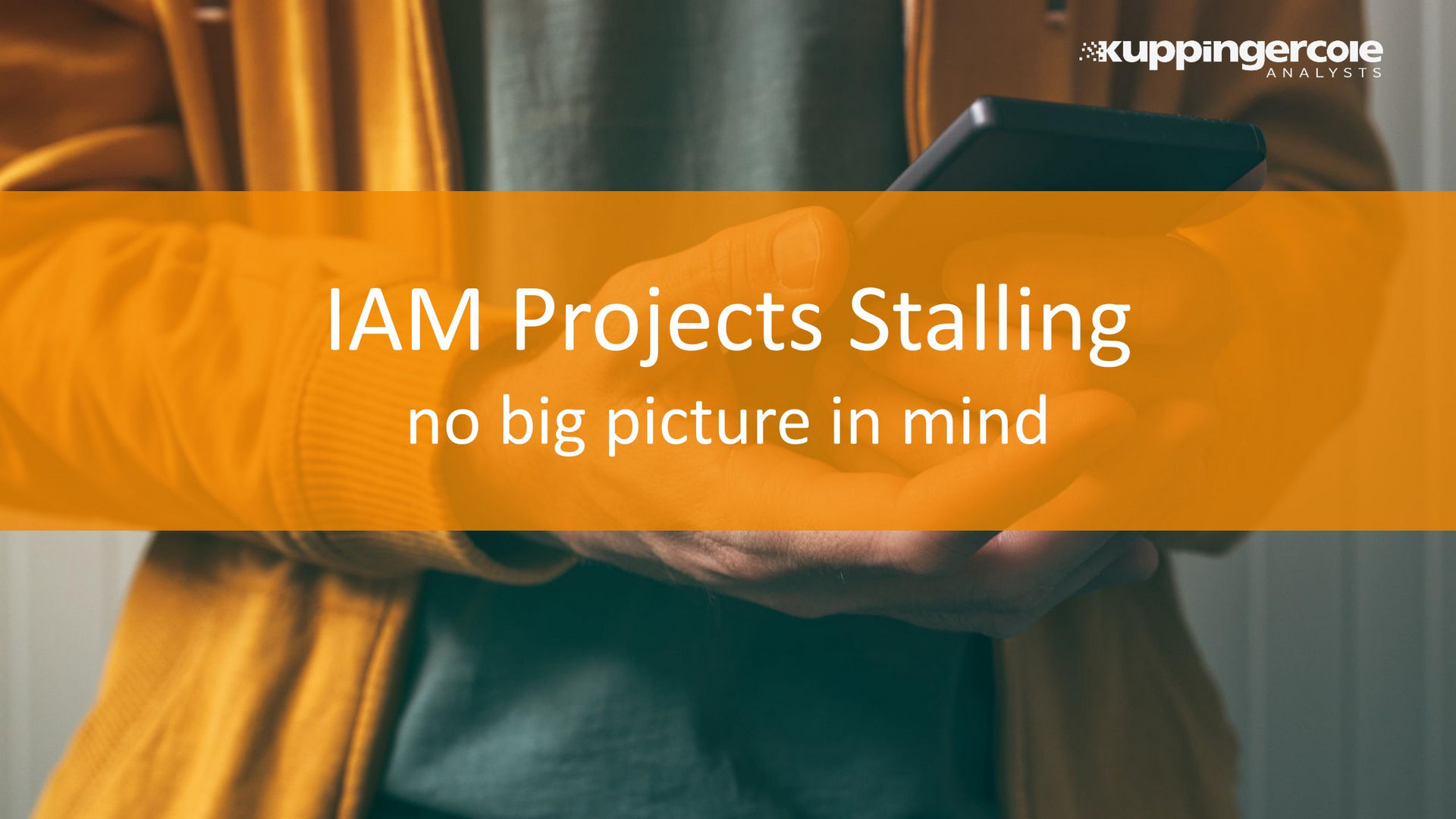 IAM Projects Stalling - No Big Picture in Mind